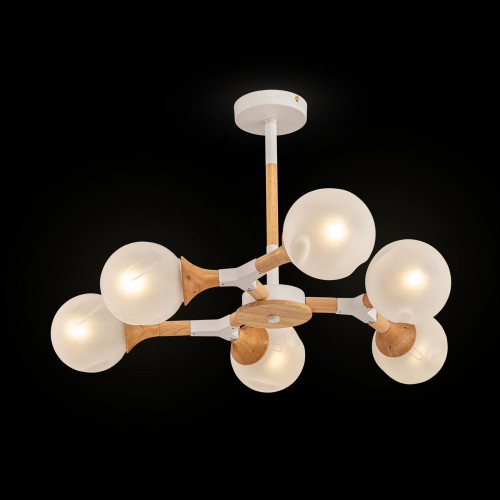 Потолочный светильник Freya FR5105CL-06W