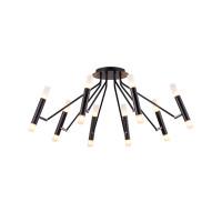 Потолочный светильник Maytoni MOD620CL-16B
