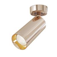 Потолочный светильник Maytoni C017CW-01RG